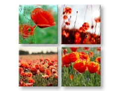 Slike na platnu Meadow of poppy poppies 4-delni Kolaž XOBKOL17E42